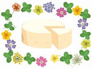 押し花とチーズ
