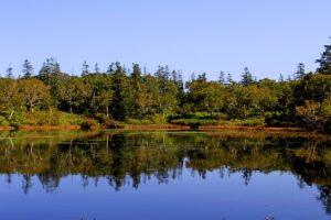 秋の神仙沼