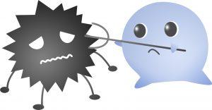 ウイルスを撃退する乳酸菌