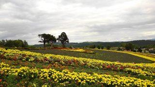 亜斗夢の丘