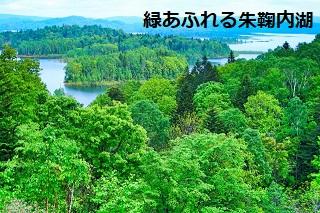 緑あふれる朱鞠内湖