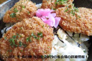 にいがた 冬 食の陣 当日座 新潟タレカツ丼