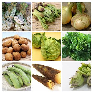 春野菜アラカルト